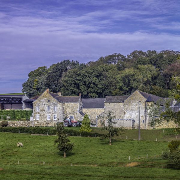 Ferme d'Argenteau - hameau de Lizin